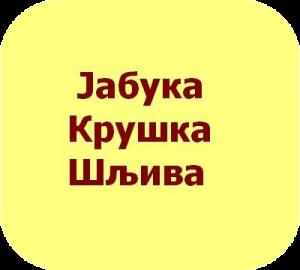 русско-сербский разговорник