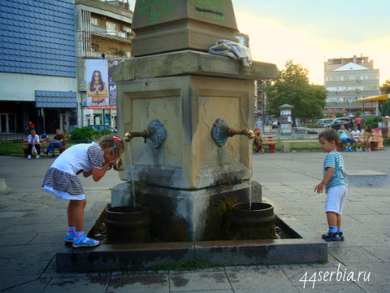 Заечар: источники с питьевой водой: более 40 в городе