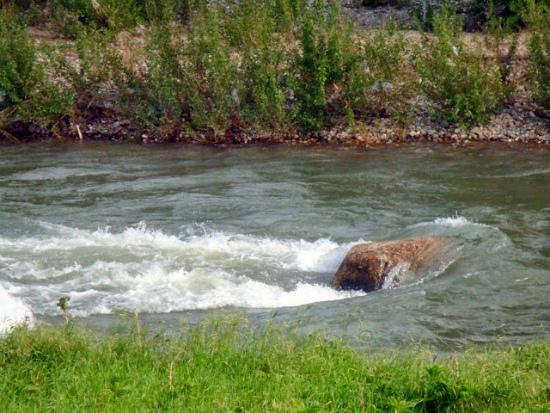 Горная речка Тимок