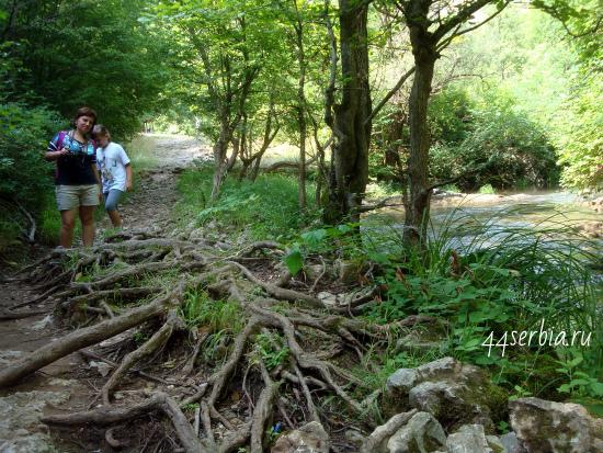 Сокобаня, путь вдоль реки Моравица