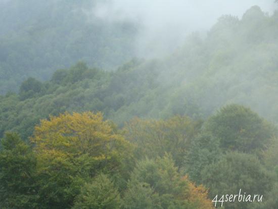 Стара Планина в Тумане