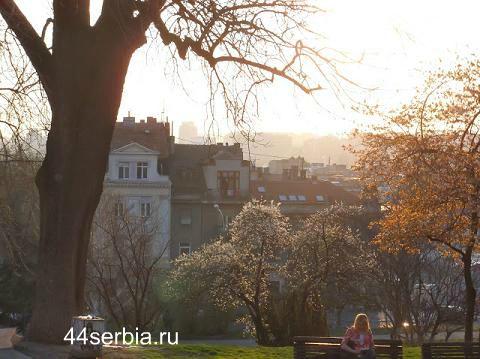 Пересадка в Белграде - советы