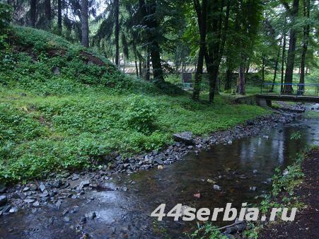Brestovac, Brestovacka banja