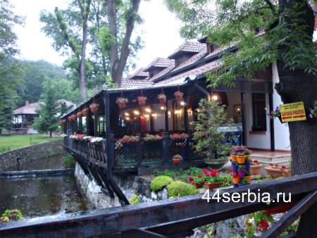 Сербия ресторан