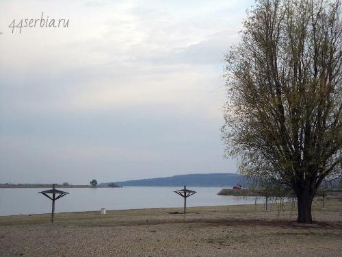 Дунай пляж Брза Паланка