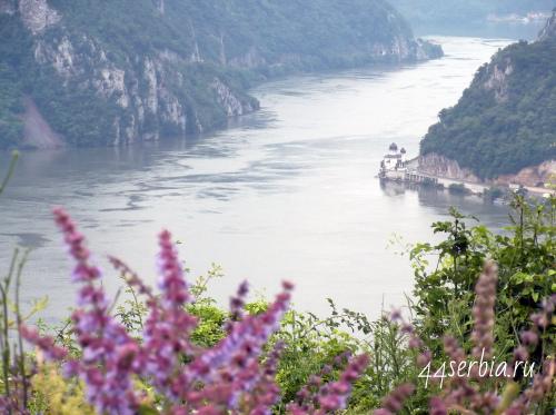 Дунай в Сербии
