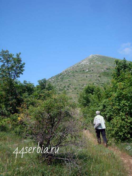 Тропинка к горе Ртань