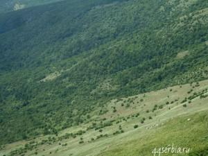 Горный пейзаж, Ртань, Сербия