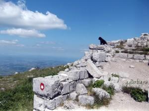 Вершина горы Ртань в Сербии