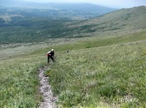 Сербия, гора Ртань