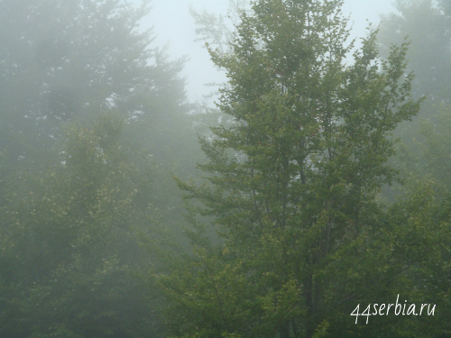Стара Планина туман
