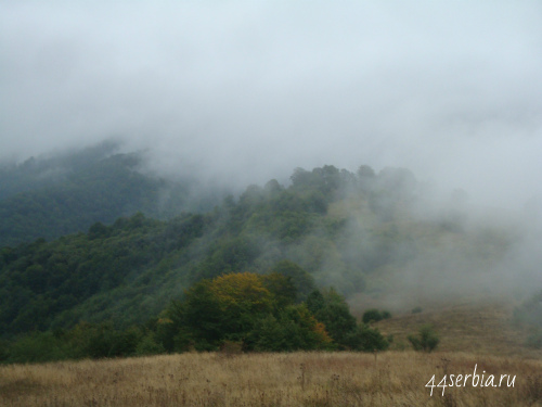 Стара Планина, туман в горах