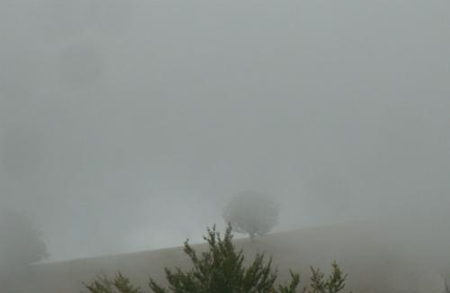 Туман идёт