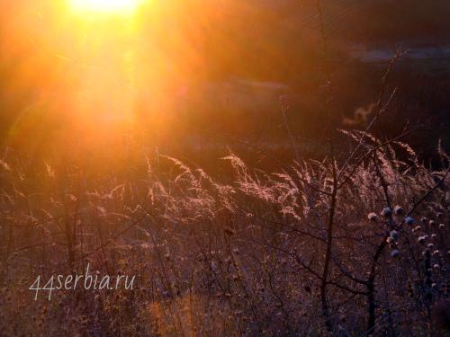 Осеннее зимнее солнце
