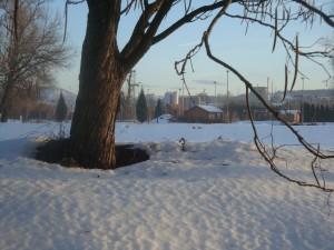 Таяние снега