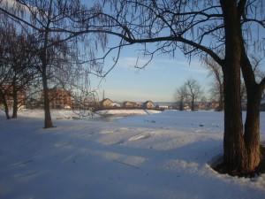 Зимний день в Сербии