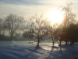 Зимний день в Восточной Сербии