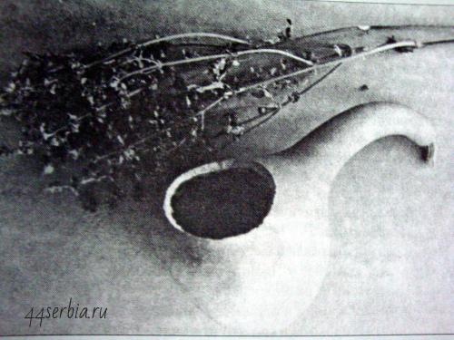 Лечение в Средневековой Сербии