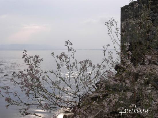 Сербия: Дунай, вид от крепости Голубац