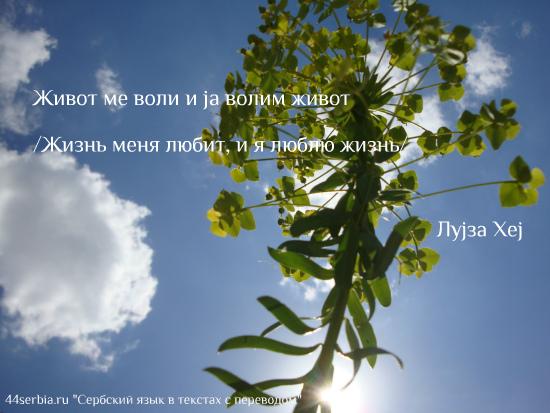 Жизнеутверждающие фразы на сербскои языке