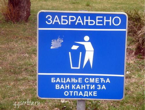 Бросание мусора