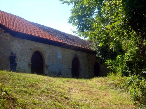 Вина в Сербии