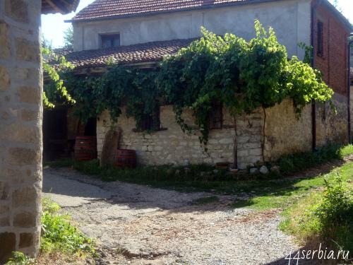 Виноделие Сербия