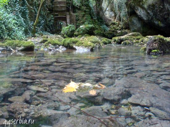 Поездка по Сербии: источник реки Тимок