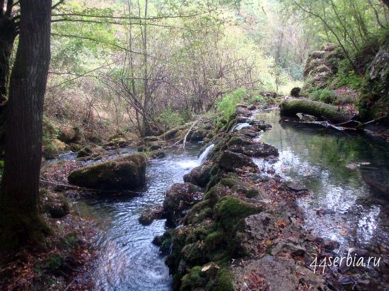 Тимок - горная река