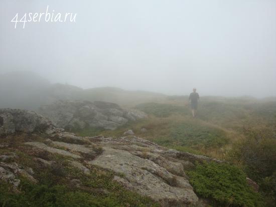 Туманные тропы Старой Планины
