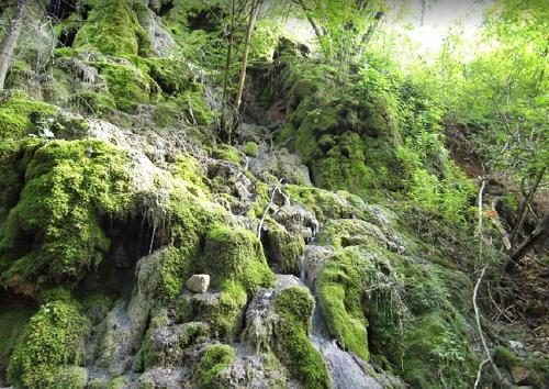 Источник около монастыря Суводол