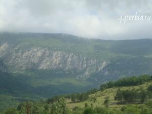 Горы Сербии, травы на сербском