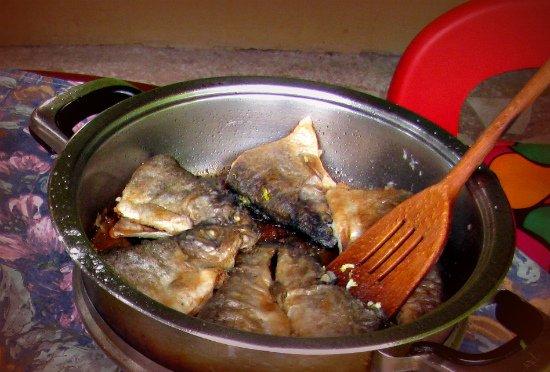 Названия рыб на сербскм языке