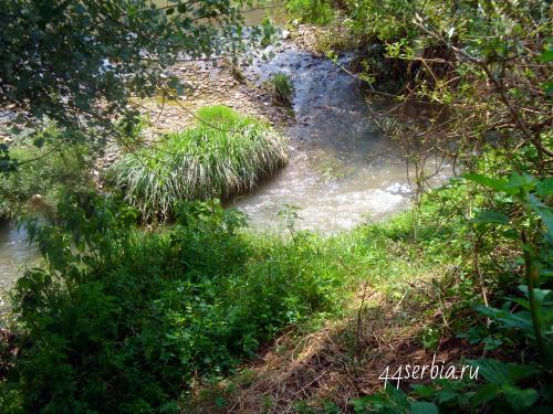 Тимок река