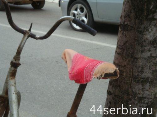 Интересные фотографии из Сербии