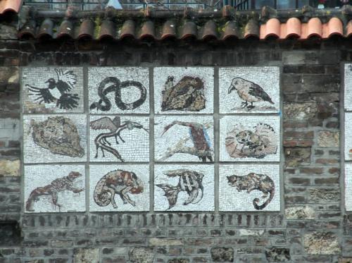 Стена_возле Зоопарка в Белграде