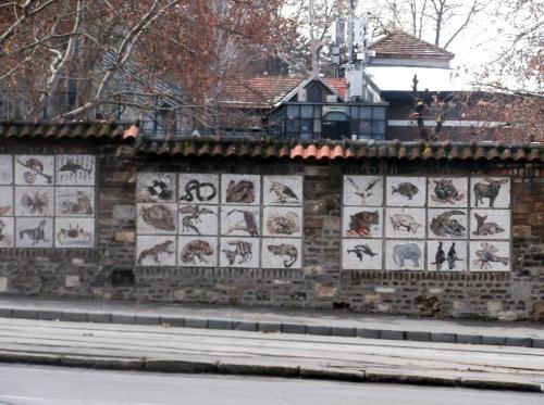 Зоопарк_в_Белграде