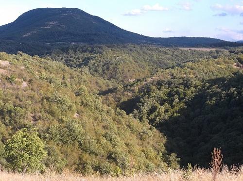 Вршка Чука гора