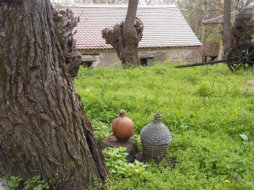 Дегустаця вина Сербия