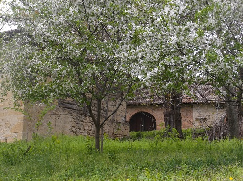 Этно место Сербия дегустация вин