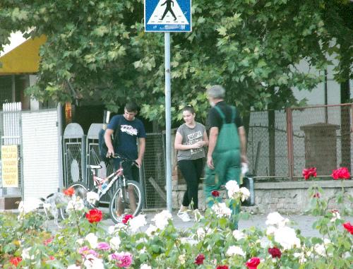 Велосипед и розы