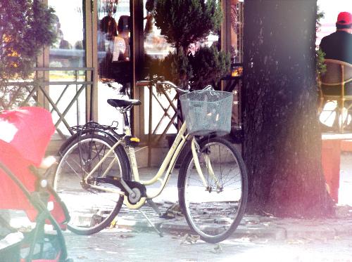 Велосипедная жизнь Заечара