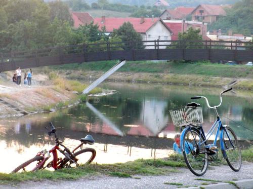 Велосипедная жизнь в Заечаре