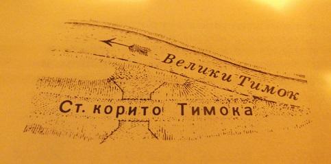 Старое русло Тимока