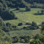 Сербия пейзаж