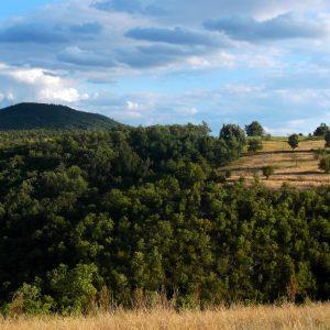Сербия, рядом с Болгарией