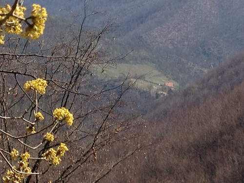 Походы_по_Сербии_фото