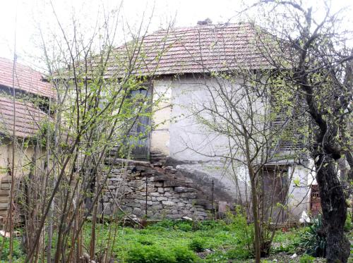 Походы в Сербии