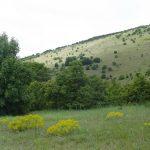 Красивые_природные_ландшафты