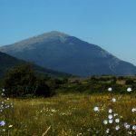 Сербия достопримечательности, гора Ртань